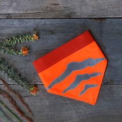 Medium - Tasmanian Tiger Pet Bandana - OMG Orange