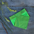 Large - Tasmanian Tiger Pet Bandana - Loud Lime