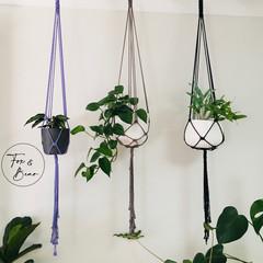 Macrame plant hanger. Design PEONY