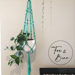 Macrame plant hanger. Design ALYSSUM