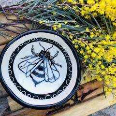 Little Bee 🐝  bowl