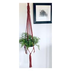 Plant hanger (rust/ring)