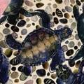 Turtles kids size 3 full length leggings tights