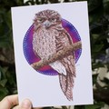 Set of 5 - Large Watercolour Greeting Cards - Birds of Australia FREE SHIPPING