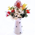 Artificial Australian Native Flowers in Rustic White Jug