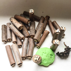 Toys of Wood - Natural Branch Stamp Alphabet