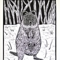 Quokka Lino Cut Print / Australian Animal Print / Australian Marsupial