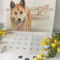 2021 Calendar Australian wildlife - A4 wall calendar - Christmas corporate gift