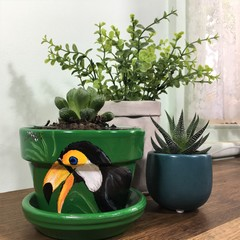 Toucan Pots - 2 sizes available - coice of colour