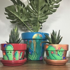Cute Cactus Indoor Plant pots- 2 Sizes Available- Choice of Colour
