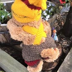 Enchanted Forest  Teddy Bear 'Nethaniel'