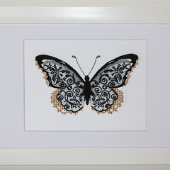 Black  Butterfly on white