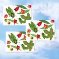 Australian Cicadas & Rainforest Flowers Three Blank Cards FREE Shipping Aust