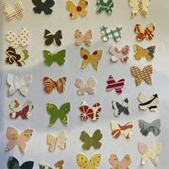 Butterflies punchies