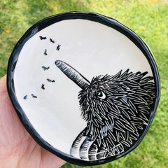 Echidna plate