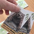 2 x Memory & Snap Cards Australian Wildlife, SET of 40 cards (20 matching pairs)