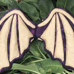 Wearable Dragon Wings Costume