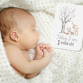 WOODLAND FRIENDS Baby Milestone Cards