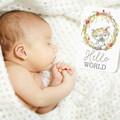AUSTRALIAN BABY ANIMALS Baby Milestone Cards
