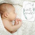 BLUE GUM EUCALYPTUS Baby Milestone Cards