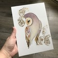 SALE Original Watercolour Art Barn Owl