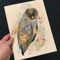 SALE TEXTURED Original Watercolour Art Barn Owl