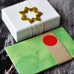 Button Tie Envelopes {2w cards} Green Dots   Handmade Button Envelope   Green