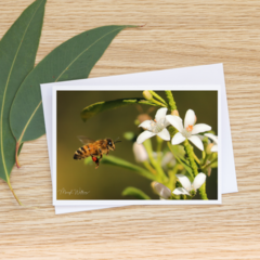 Busy Bee - Photographic Card #36