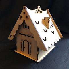 Light Up House
