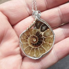 Large Ammonite fossil pendant, Sterling silver wire wrapped
