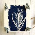 Mini Flower Press, decorated with original wattle flower cyanotype art