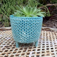 Turquoise Carved Footed Planter