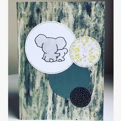 Koala mates card