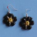Black Flower Power Earrings