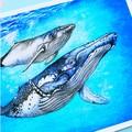 Medium art print 'Whale Song' Humpback whales, watercolour fine art print