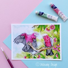 "Giclee fine art print ""Pretty in Pink"" pink and grey galah painting"