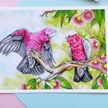 """Giclee fine art print """"Pretty in Pink"""" pink and grey galah painting"""