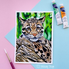 "Medium art print ""Clouded Leopard"" acrylic fine art print"