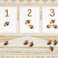 Autumn Activities for Toddlers / Preschool - Digital Download