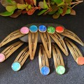 A Pair of Bronze Hair Clips in Assorted Colors