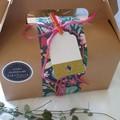 Fairy Garden Kit in a Box