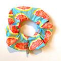 Watermelon Sugar - Bird Safe Collar
