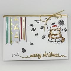 Christmas Card - Cat in a Santa Hat