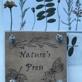 Toys of Wood - Nature's Press