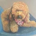 Pet Portrait Commissions