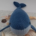 Bluey the Whale