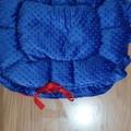 Hand Made Pet Beds Blue & Red Fleece