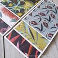 Australiana Mini Card Set - Flora and Fauna 01
