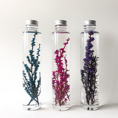 HANDMADE FLORAL DECOR BY EN FLOR - THE TEA TREE BOTANICAL BOTTLE