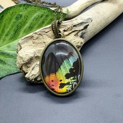 Fairy wing oval necklace - butterfly wing (multiple colour options available)